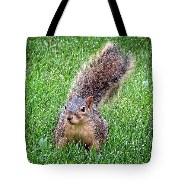 Secret Squirrel Tote Bag