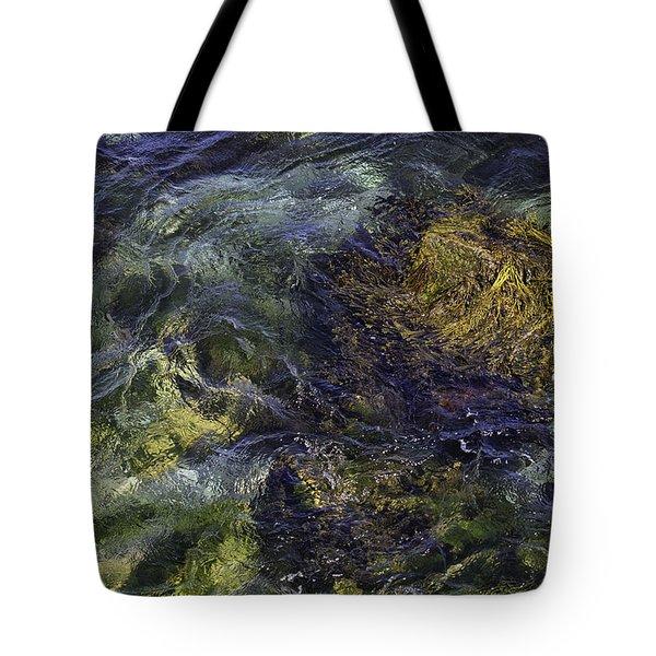 Secrets Of The Sea Tote Bag