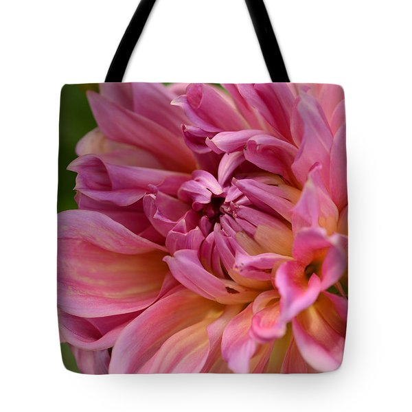 Secrets Within Tote Bag by Wanda Brandon
