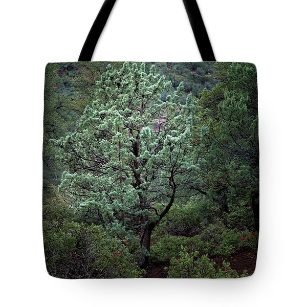 Sedona Tree #1 Tote Bag