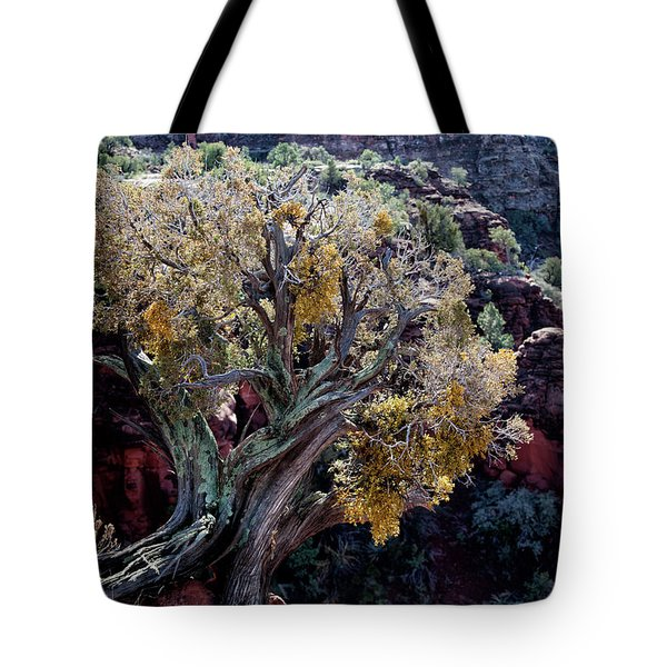 Sedona Tree #2 Tote Bag