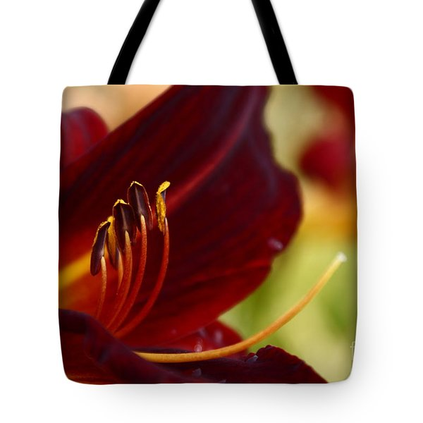 Seduction After The Rain Tote Bag