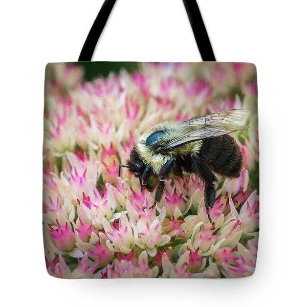 Tote Bag featuring the photograph Sedum Bumbler by Bill Pevlor