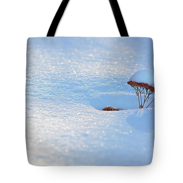 Sedum Sprout In Winter-1 Tote Bag
