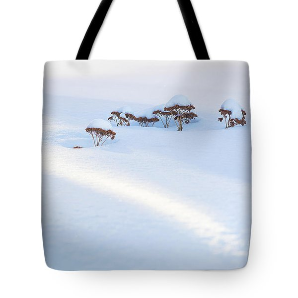 Sedum Sprouts In Winter-8210 Tote Bag