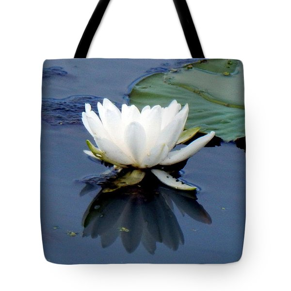 See Below The Surface Tote Bag