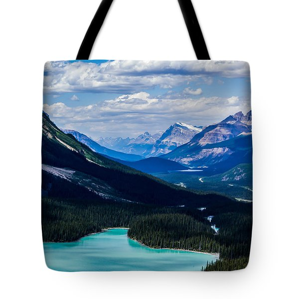 See Far Tote Bag