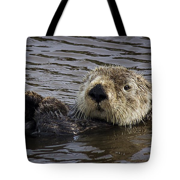 See Otter Posing Tote Bag