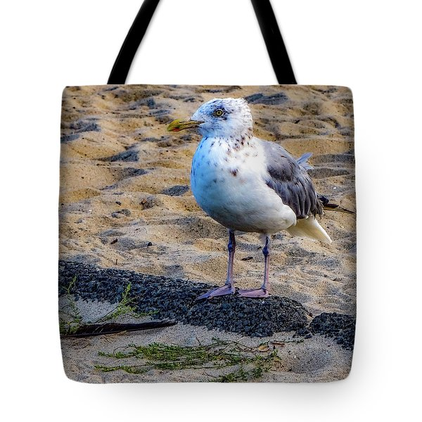 See The Gull Tote Bag