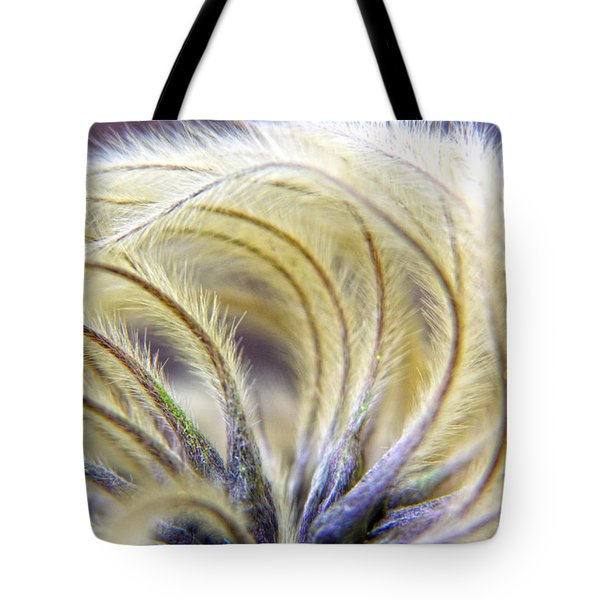 Seedheads Tote Bag by Brian Roscorla