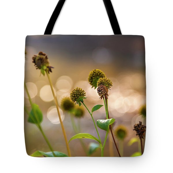 Tote Bag featuring the photograph Seedheads by Mark Mille