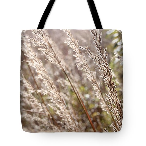 Seeds Of Autumn Tote Bag