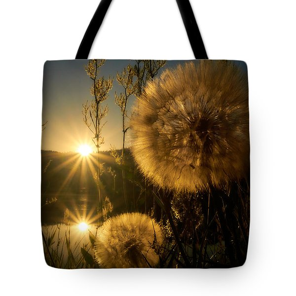 Seeing Double Tote Bag by Loni Collins