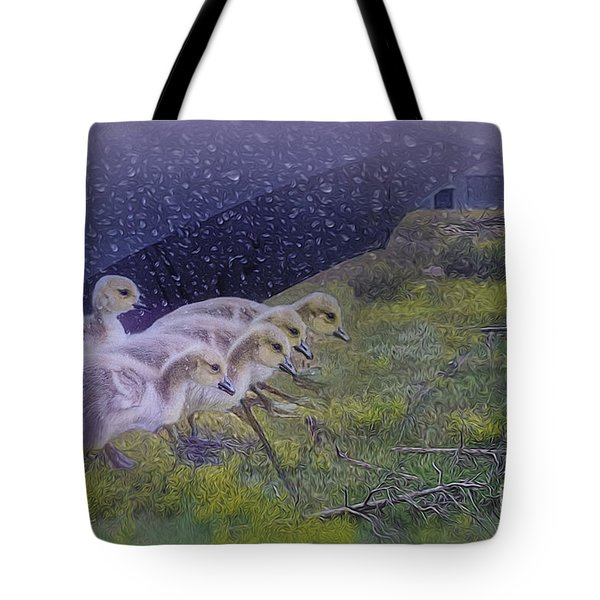 Seeking Shelter From The Storm Digital Artwork By Mary Lou Chmur Tote Bag