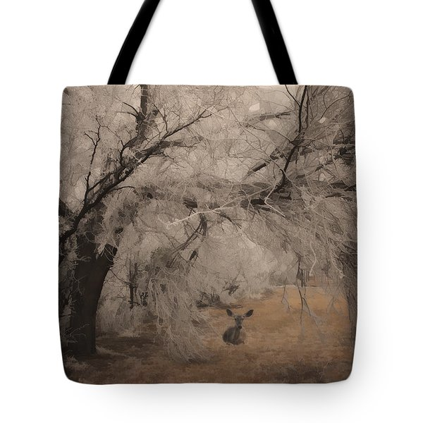 Seeking Shelter Tote Bag by Karen Slagle