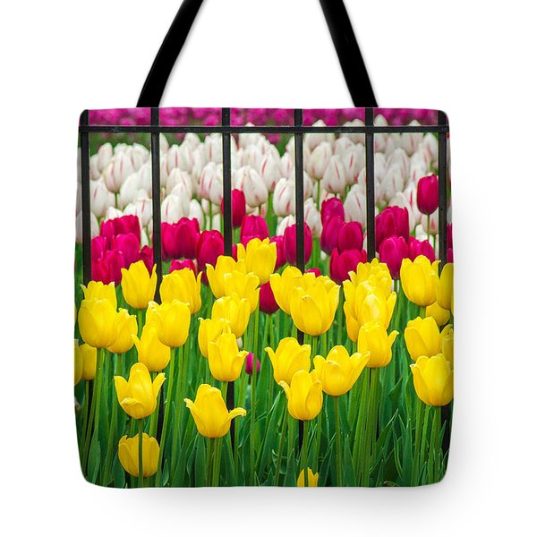 Segregated Spring Tote Bag