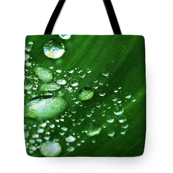 Growing Carefully Tote Bag by John Glass