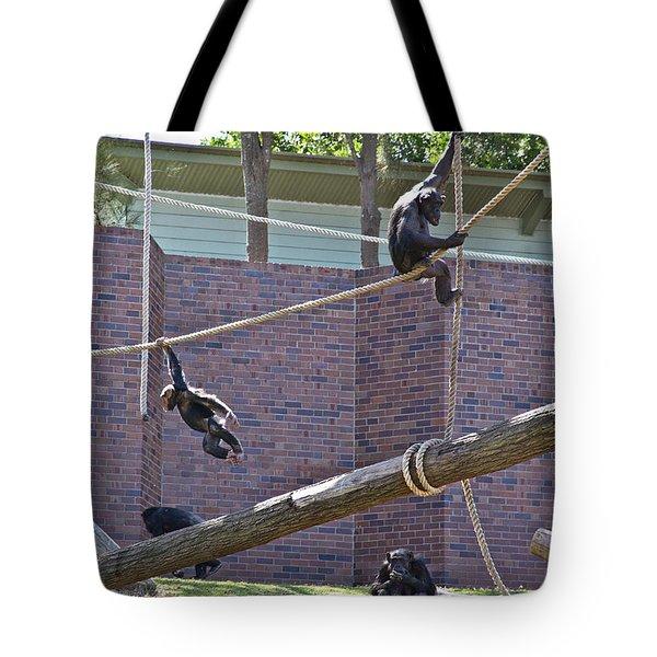 Tote Bag featuring the photograph Sembe Got Away  by Miroslava Jurcik