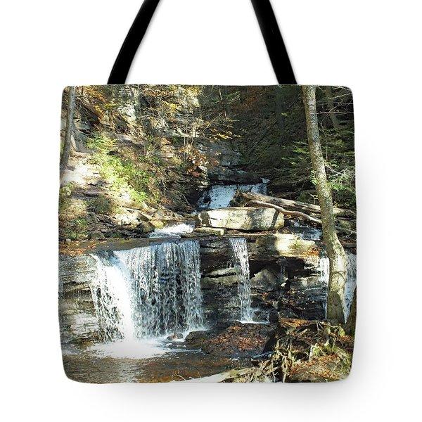 Delaware And Seneca Falls 3 - Ricketts Glen Tote Bag