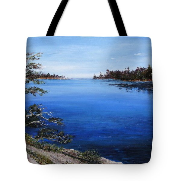 Tote Bag featuring the painting Sentinel by Jan Byington
