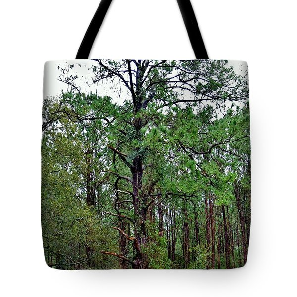 Sentinel Of The Forest Tote Bag by Tim Townsend