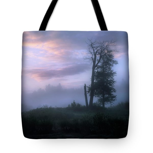 Sentinels In The Valley Tote Bag by Dan Jurak