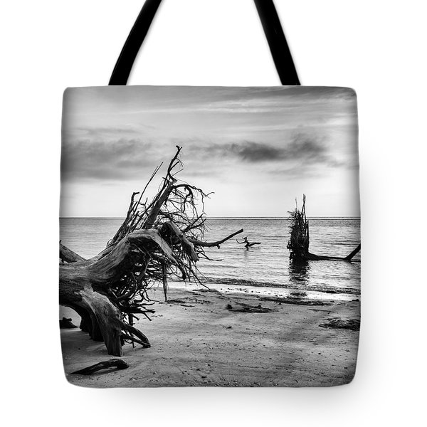 Separated Tote Bag by Alan Raasch