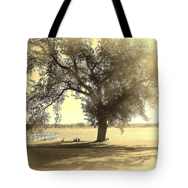 Sepia Colors In A Tree Tote Bag