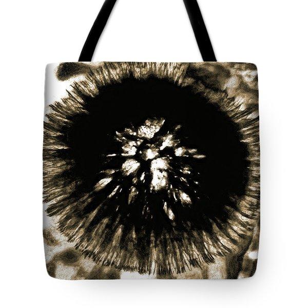 Sepia Dandelion Tote Bag