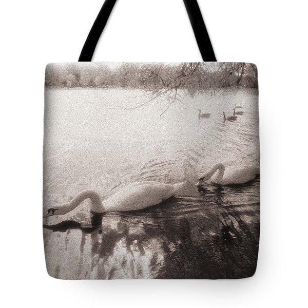 Sepia Swans Tote Bag