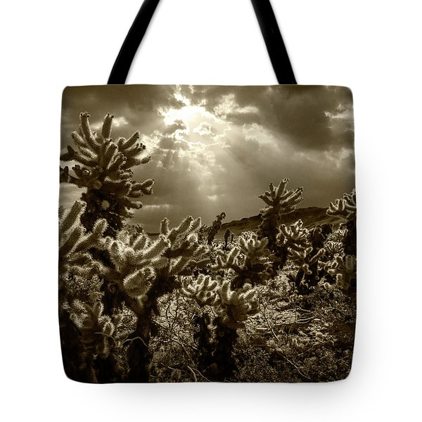 Tote Bag featuring the photograph Sepia Tone Of Cholla Cactus Garden Bathed In Sunlight by Randall Nyhof