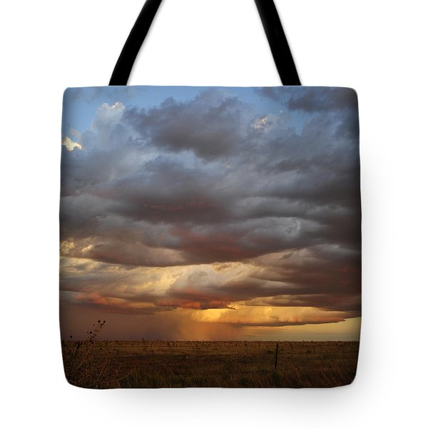 September Rain Tote Bag by Karen Slagle