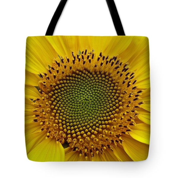 Tote Bag featuring the photograph September Sunflower by Richard Cummings