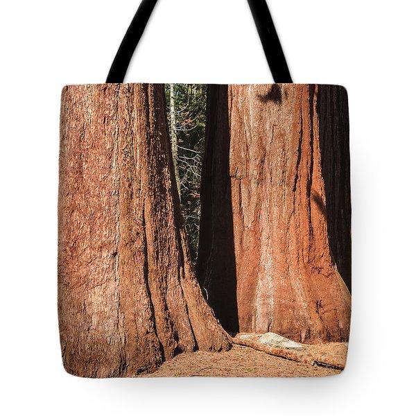 Sequoia Tote Bag