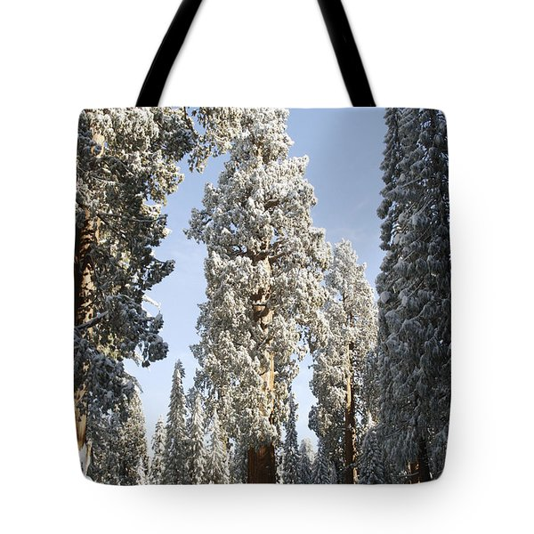 Sequoia National Park 4 Tote Bag