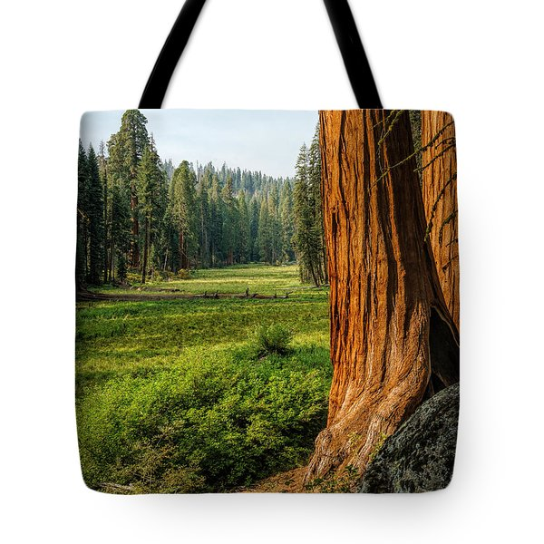 Sequoia Np Crescent Meadows Tote Bag by Daniel Heine