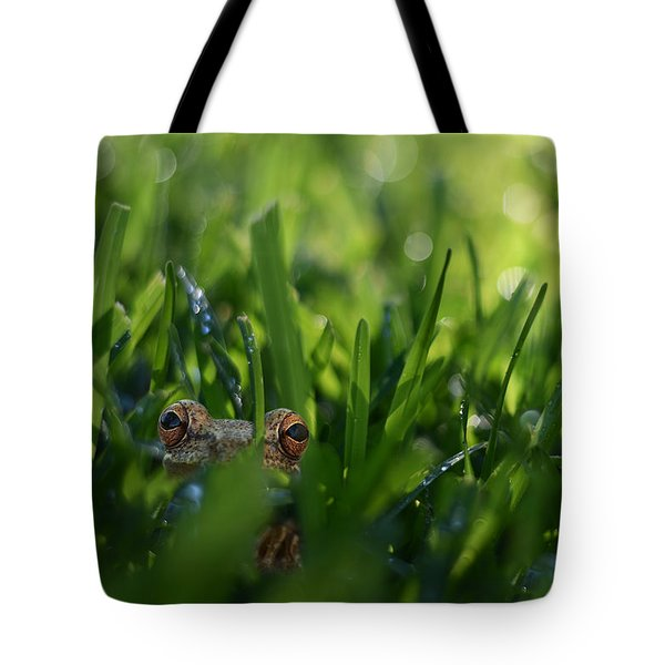 Tote Bag featuring the photograph Serendipity by Laura Fasulo