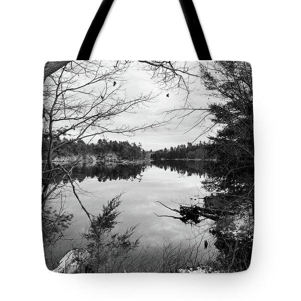 Serene Fall  Tote Bag