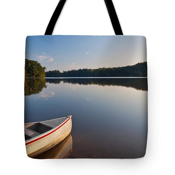 Serene Morning Tote Bag by Dale Kincaid