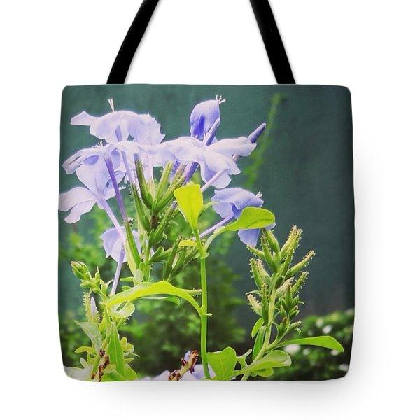 Serene Purple Tote Bag