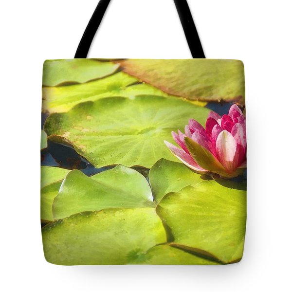 Serenity And Solitude Tote Bag by Peggy Hughes