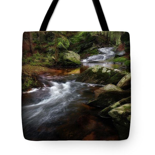 Tote Bag featuring the photograph Serenity Sunrise by Bill Wakeley