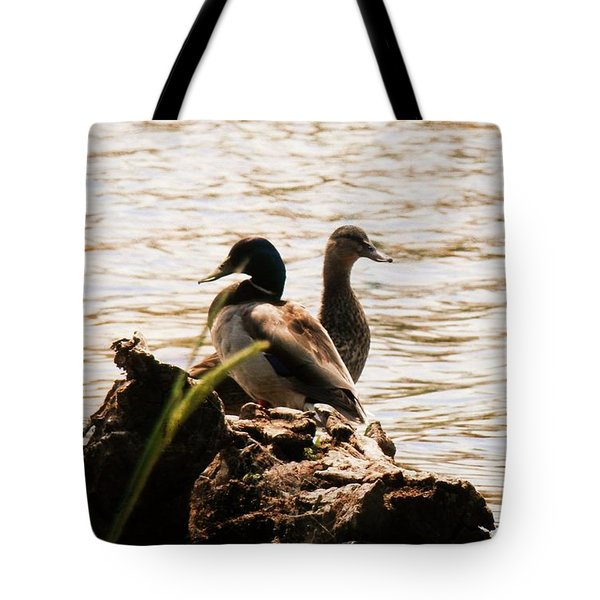 Serenity Sunset Tote Bag