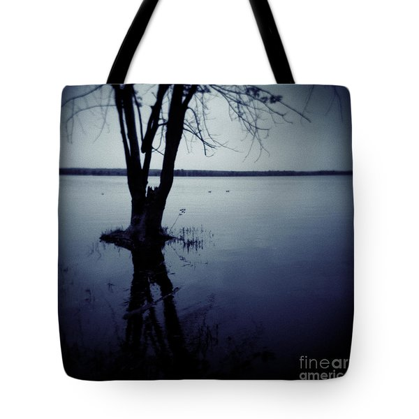 Series Wood And Water 2 Tote Bag