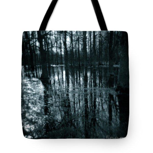 Series Wood And Water 7 Tote Bag