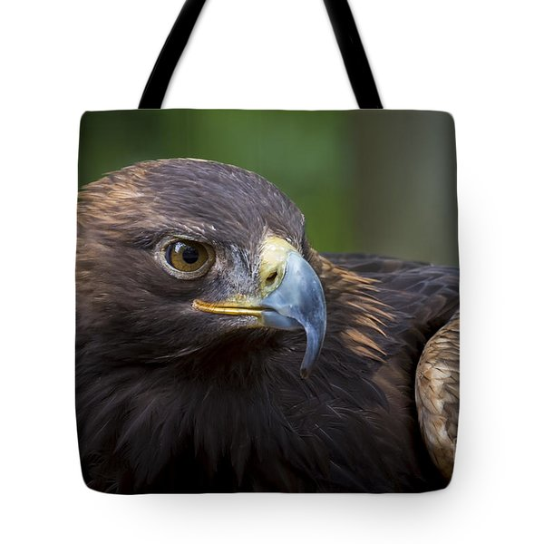 Serious Tote Bag by Andrea Silies