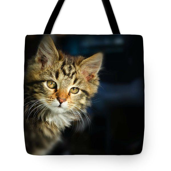 Serious Cat Portrait Tote Bag