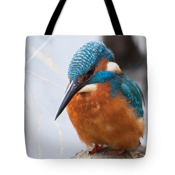 Serious Kingfisher Tote Bag