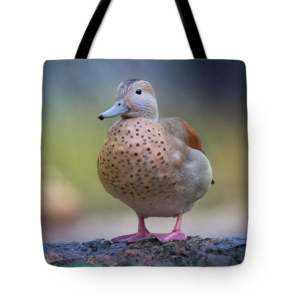 Seriously Cute Tote Bag