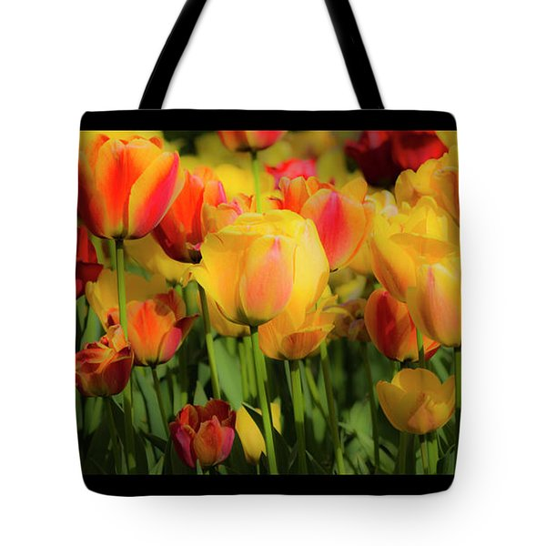 Tote Bag featuring the photograph Seriously Spring - Bordered by Wendy Wilton